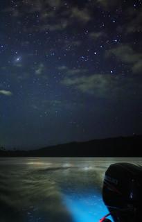 Bioluminescent Astrophotography Puerto Rico