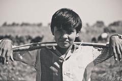 boy at farm