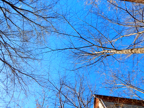 небо весеннее