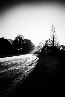 Shadows Of The Sun - Syon House The Great Conservatory London