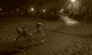 Noir Raleigh Wayfarer in Woodlawn Park.