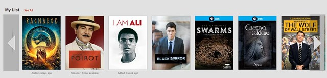 Netflix Block Overflow