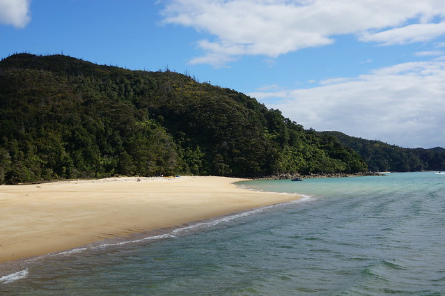 A beach in Abel Tasman Natl Park