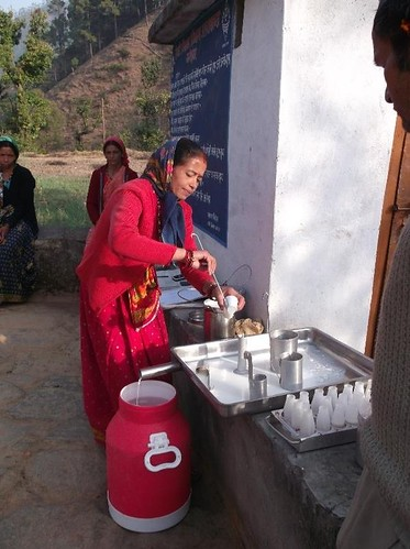 Geeta Bisht, a women farmer who collects milk for the cooperative at Kolseer village in Uttarakhand