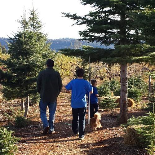 I would follow them anywhere #family #boys #wild #california #brave