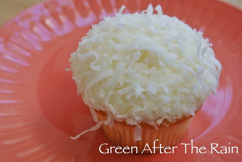 1501 Georgetown Cupcakes at Home _0523