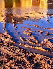 Muddy reflection