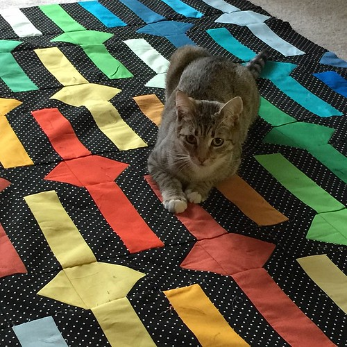 It's already been inspected and approved. #kittysupervisor #beltsandbucklesquilt @rebelcraftmedia @tensionissues