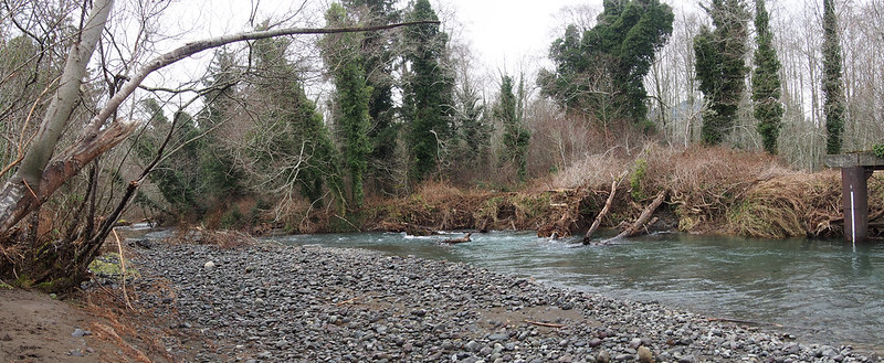Big Quilcene River (2B)