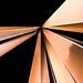 Neuf lignes obliques by Fabrizio Schinocca