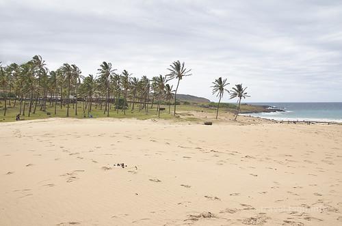 【写真】2015 世界一周 : アナケナビーチ/2021-04-05/PICT8650