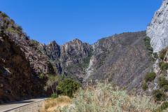 Kings Canyon & Sequoia - 301
