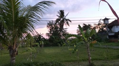 Bali-3-065