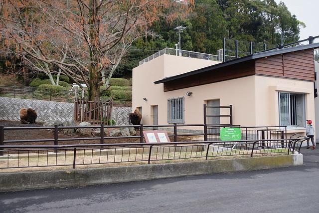 150320家族で日本平動物園 63 1