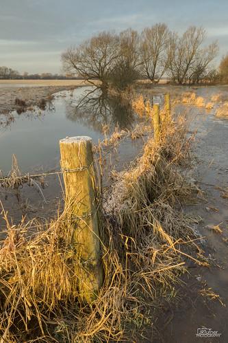 england ice weather sunrise canon landscape dawn frost flood january wiltshire westcountry wessex goldenlight cricklade 2015 jaketurner canon5dmarkiii jrturnerphotography