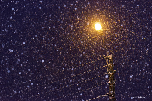 Snow flakes in the  night !