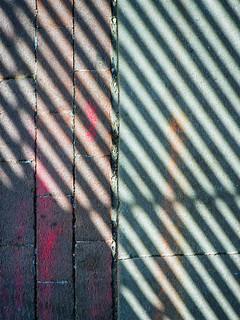 Paternized Shadowfaction