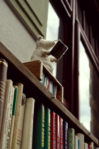 The tiny reader