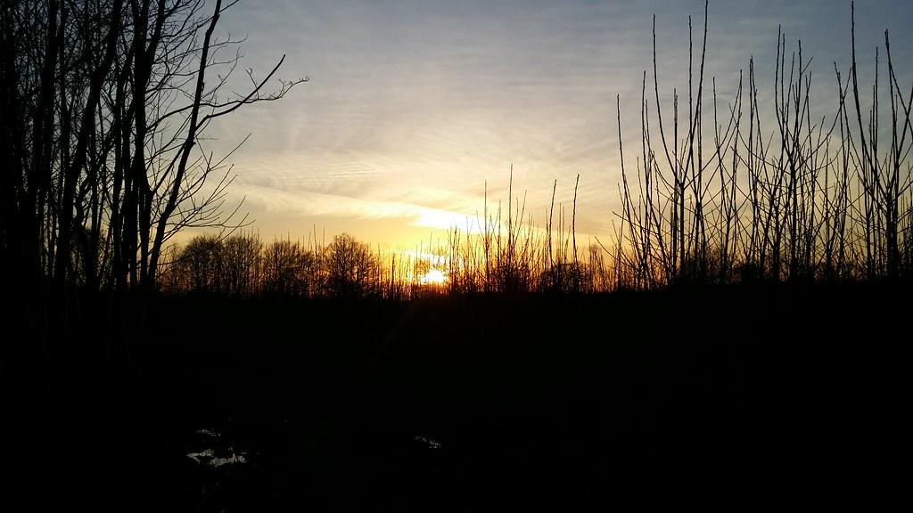 Wealdway sunset #sh