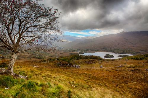 pflanzen wolken irland kerry berge orte landschaft bäume länder hdrdri techniken seeundmeer