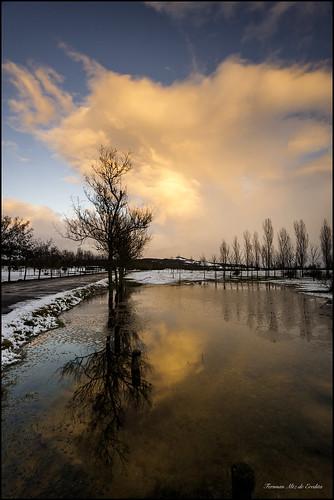 arbol nieve invierno frio garaio eredita fernnan pantanotormrnta