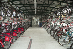bicycle mechanic(0.0), bicycle motocross(0.0), tarmac(0.0), endurance sports(1.0), bicycle racing(1.0), road bicycle(1.0), wheel(1.0), vehicle(1.0), sports equipment(1.0), cycle sport(1.0), road cycling(1.0), cycling(1.0), land vehicle(1.0), bicycle(1.0),