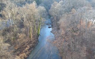 Rock Creek 513