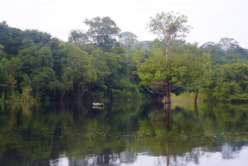 manaus-rio negro-amazon 48