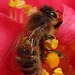 Honey bee collecting pollen #4 by Lord V