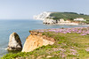 Beautiful Freshwater Bay on the Isle of Wight - IMG_6283