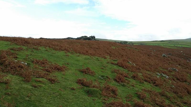 Boulters Tor #dartmoor #sh
