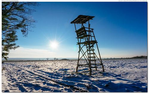 Winterspaziergang Senningshöhe