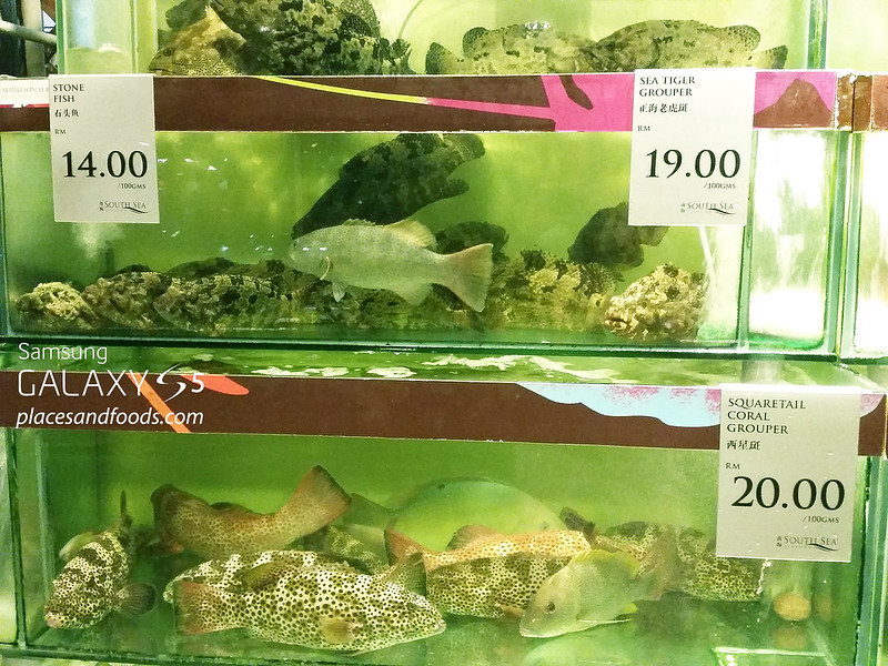 south sea seafood grouper prices