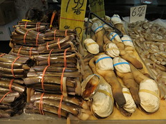 Razor clam and  Geoduck in Chinatown, Manhattan