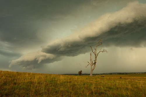 storm australia newsouthwales aus lonetree woodville paulhollins nikond610