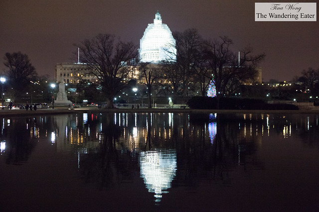 The Capitol and its reflection