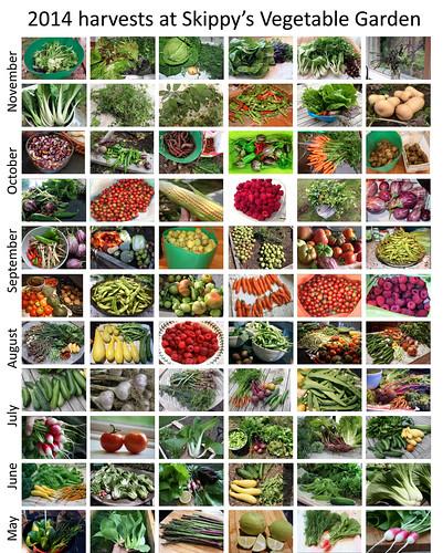 2014 harvests.pptx