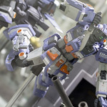 GBWC2014_World_representative_exhibitions-86