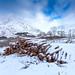 Glencoe Logs by b13bhm