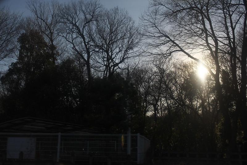 川越散歩 特急小江戸 2015年2月2日