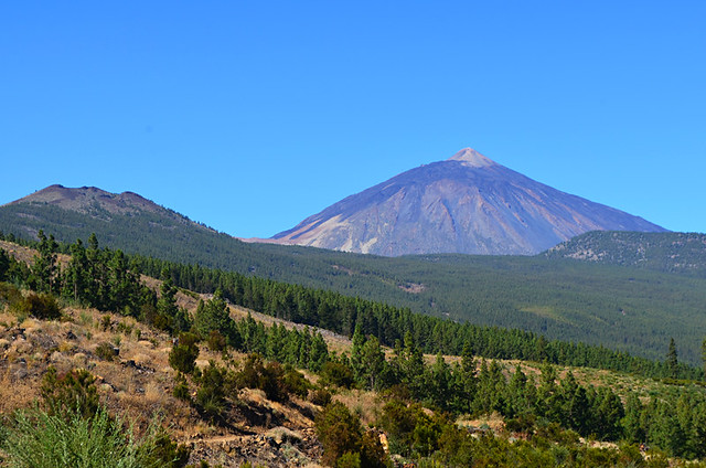 Mount Teide and Pine Forest, Northern Exposure Routes, Tenerife