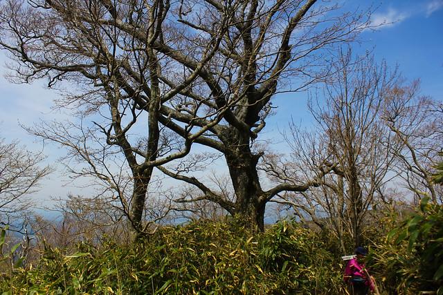 2014-05-06_02470_九州登山旅行.jpg
