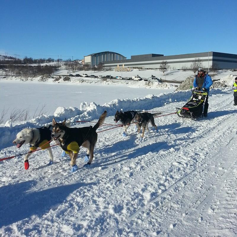 Harald Tunheim på tur ut fra Kirkenes. Foto: Eirik Fløtlien