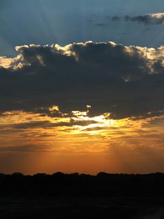 Sundown at Yala - By Dimuth Weerasekera