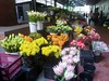 Cape Town Flower Market