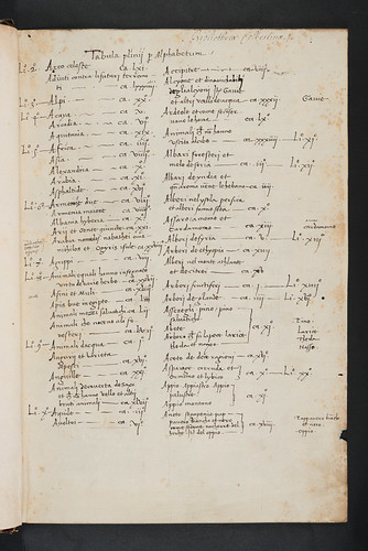 Manuscript table of contents in Plinius Secundus, Gaius (Pliny, the Elder): Historia naturalis [Italian].