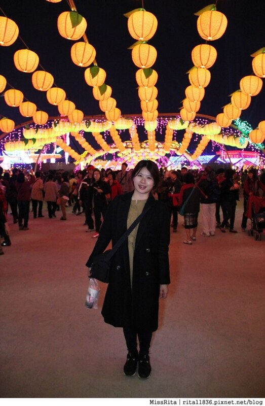 2015 台灣燈會 烏日燈會 台灣燈會烏日高鐵區 2015燈會主燈4