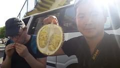 Durian King n°1