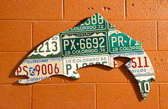 License Plate Fish