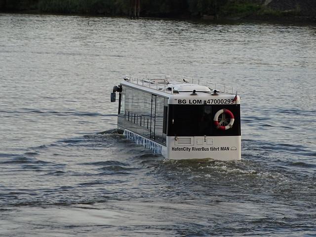 HafenCity RiverBus DSC07898